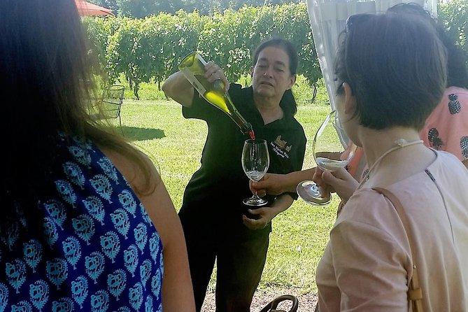 Wine Beer and Spirit Tour in Frederick, Baltimore, MD, ESTADOS UNIDOS