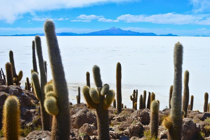 An exciting journey between Chile and Bolivia, an exclusive tour through through the Atacama Desert to discover the salar de Uyuni.<br><br>You will be accompanied in private tour to the discovery of this extraordinary wild landscape by reliable drivers and guides that will make your trip pleasant, relaxing and safe.<br><br>The salar de Uyuni, an immense magic mirror, unique in the world, where heaven and earth come together, where you can perceive the beauty and magic of our planet.