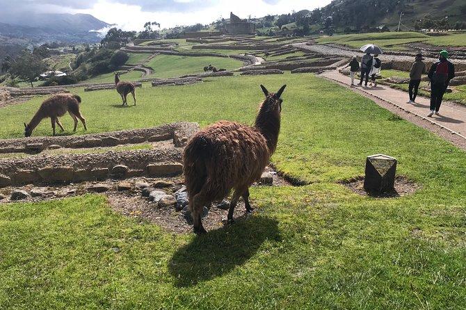 MÁS FOTOS, The Best of Ingapirca: an Adventure to the Ecuadorian Machu Picchu