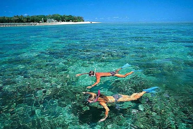 MÁS FOTOS, Cham Islands Full-Day Tour: Speed Boat, Lunch, Snorkeling and Beach