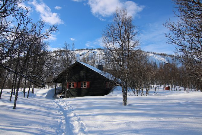 SMALL GROUP- Hiking/Snowshoeing with delicious Lunch at Polar Cabin - (All Year), Tromso, NORWAY