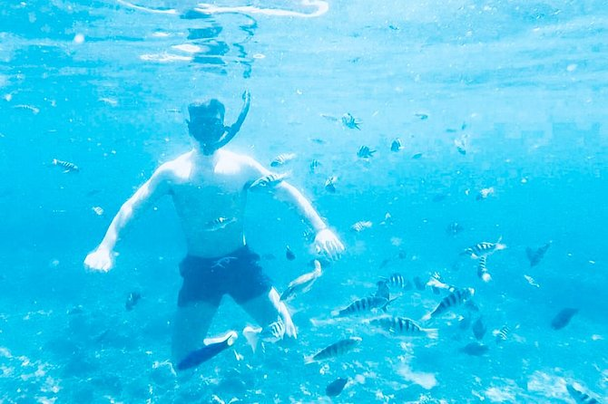 All Inclusive : Bali Blue Lagoon Snorkeling with Lunch and Transport, ,