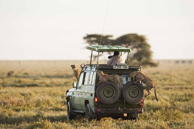 It is an exclusive and adventures Safari with a traveler valued money <br>It's a big five and wildebeest migration safari