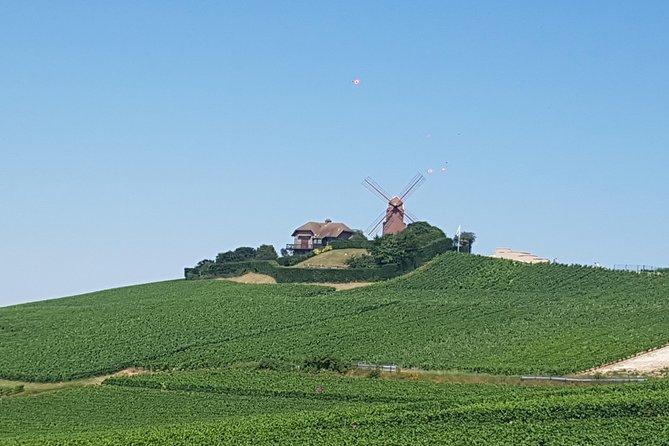 Champagne half-day tour, Reims, FRANCIA