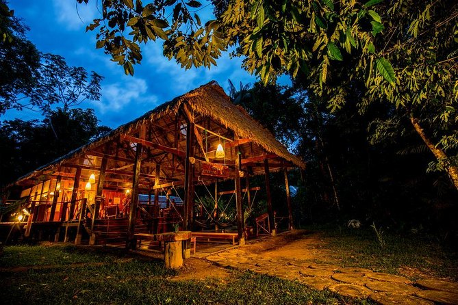 Immerse in the natural wonders of the Peruvian Amazon from the comfort of a unique rainforest lodge, owned by the local indigenous community. Your 3-day eco-tour begins with a 45-minute boat ride from the town of Puerto Maldonado. Enjoy a guide-led rainforest expedition to Tres Chimbadas Lake in the Tambopata National Reserve, watch a riot of colorful birds at Parrot Clay Lick and embark on several easy walks—from the forest floor to the treetops! You'll see Amazonian wildlife, such as rare river otters, caiman and toucans. Full board and round-trip hotel transfers are included. Numbers are limited to 8 people, ensuring an intimate experience with a small group.