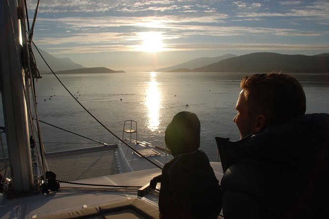 Fjord Cruise with Luxury Catamaran in Tromso, Tromso, NORUEGA