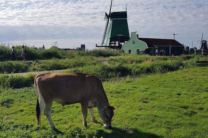 Marken, Volendam & Zaanse Schans: Cheese, Windmills and Clogs, Amsterdam, HOLANDA