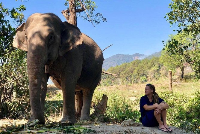 3 Best Experiences at an Amazing Price!<br><br>1. Meet adorable elephants at Meaklang Elephant Sky Camp, an Ethical Elephant Sanctuary which has 5-star rating on TripAdvisor. <br><br>The elephants are taken care very well. You will closely observe the adorable creatures.<br><br>2. Visit Doi Inthanon, go to the highest point of Thailand, see beautiful King and Queen pagodas.<br><br>3. Finish the tour with Kew Mae Pan nature trail. A.k.a. Heaven trail due to its stunning beauty. **During June - October, Kew Mae Pan is closed to visitors. We will trek at Pha Dok Siew instead.**