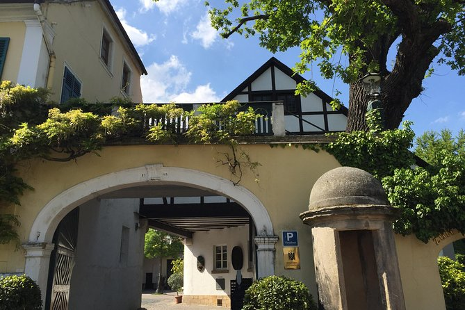 Grape Escape Pfalz