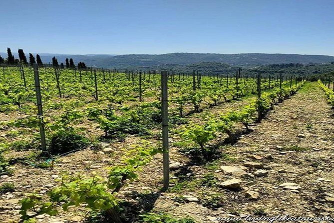 Private Car - Baalback & Wine Tasting - half-day tour - lunch included, Beirut, LIBANO