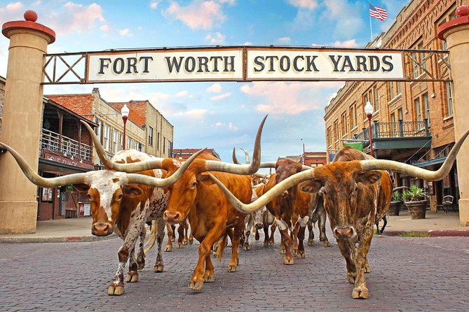 """Experience Fort Worth """"Where The West Begins."""" Cowboys. Indians. Cattle. Oil. The History of Fort Worth reads like the history of the American West! Explore Fort Worth's true Western Heritage during your visit in downtown's Sundance Square and the Stockyards National Historic District.<br>* Fort Worth Water Gardens<br>* JFK Tribute<br>* Sundance Square, historic downtown<br>* Sid Richardson Museum<br>* Fort Worth Historic Stockyards<br>* Fort Worth Stockyards daily Texas Longhorn Cattle Drive<br>* Cowtown Coliseum<br>* White Elephant Saloon<br>* Fincher's Whitefront Western Wear<br>* AT&T Stadium """"Dallas Cowboys""""<br>"""