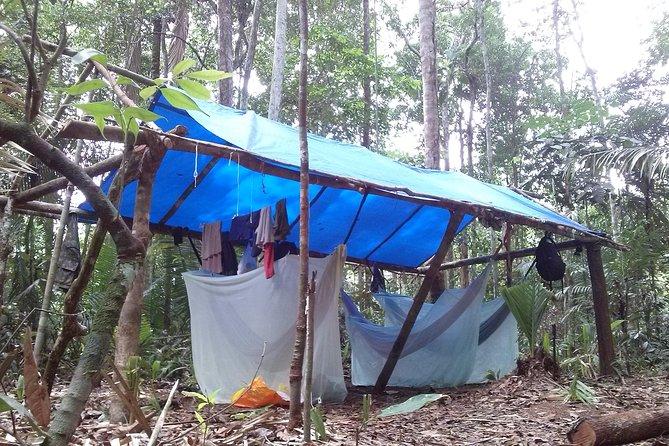 Amazon Survival Tour 4D/3N, Manaus, BRASIL