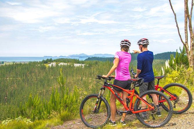 MÁS FOTOS, Waitangi Mountain Bike Park Experience