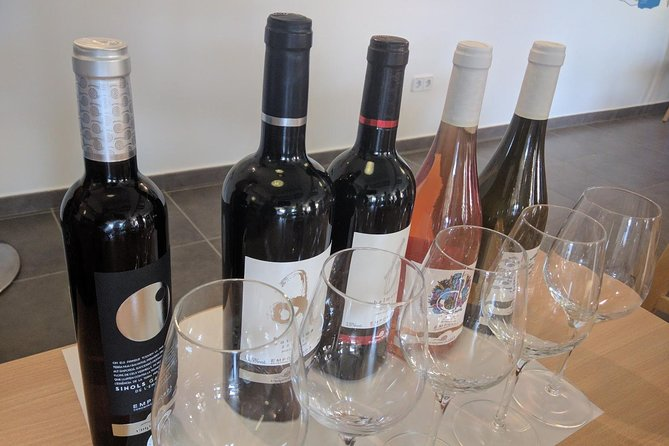 Wine Tasting and Brunch Small Group Tour from Girona, Girona, ESPAÑA