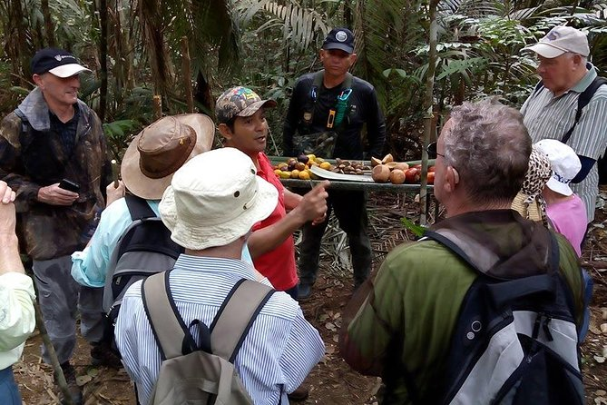 Half Day Tour- Jaguar Jungle Survival - Amazon Rainforest - From Manaus, Manaus, BRASIL