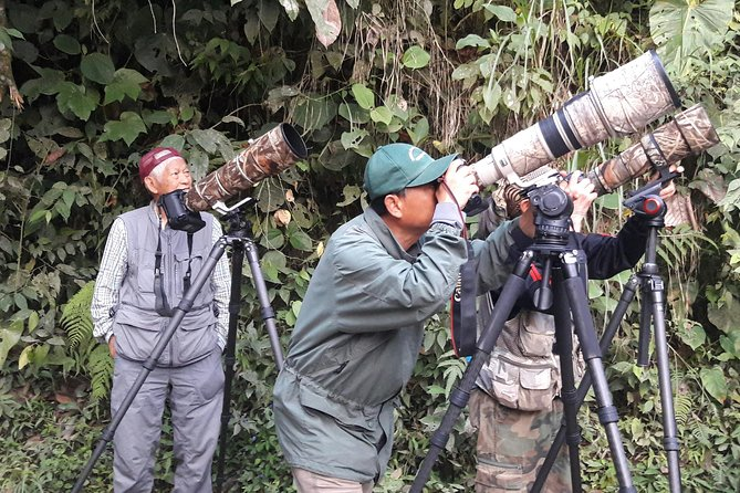 Marcelo's experience, character, knowledge and passion for birding makes this a fantastic opportunity to see a variety of species in their natural enviroment without having to arrange anything yourselves.<br>