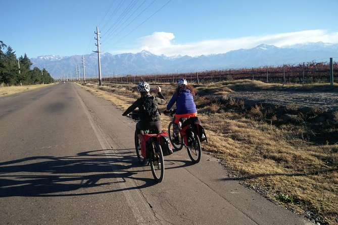 Uco Valley by Bicycle, Mendoza, ARGENTINA