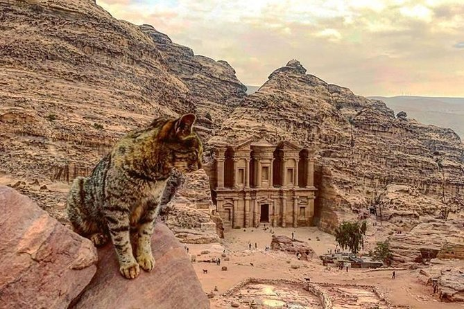 4 Days Private Tour: The Best of Jordan, ,