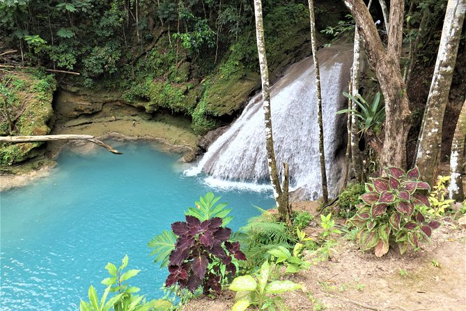 Private Blue Hole and Secret Falls Day Trip from Falmouth, Falmouth, JAMAICA