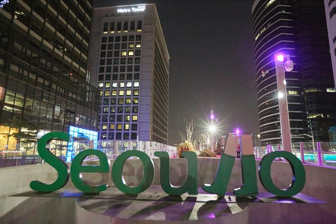 Seoul Night Tour: Sevit Some, Fountain, and Palace, Seul, COREIA DO SUL