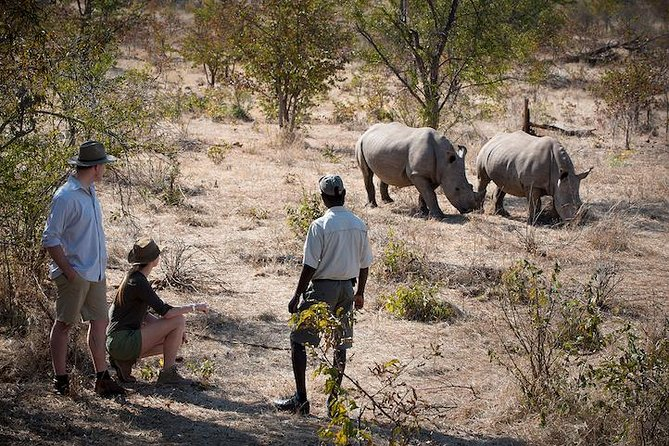 Rhino Walk In The Mosi-Oa-Tunya National Park, Livingstone, ZIMBABUE