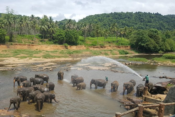 Kandy From Colombo Airport, Kandy, SRI LANKA