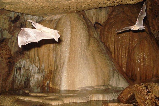 Venado Caves, ,
