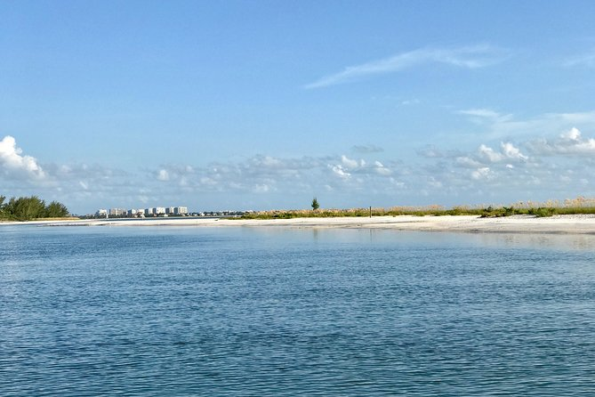 Florida Eco Charters Dolphin Day Cruise, Naples, FL, UNITED STATES