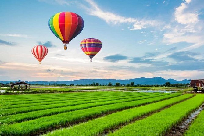 After an early morning pick up from your Chiang Rai hotel, arrive at an authentic farm at Ban Chomna Resort. Enjoy a refreshing tropical Welcome Drink, such as mint, lemon grass or seasonal juice. <br><br>Watch the Ground Crew prepare for the 'Once-In-A-Lifetime' experience of hot-air ballooning over the stunning Chiang Rai countryside. The experience will take approximately 45 to 60 minutes and will be at dawn, just as the sun rises to start a new day. <br><br>After landing, take part in the Post Flight Champagne Celebration in the grass hut stations right in the middle of the rice field. Then it is time for an organic Lanna Style A -La-Carte Breakfast with stream sticky rice harvested from their own rice field, together with local herb juice, fruits and vegetables fresh from the garden. <br><br>Should you wish, you'll get a kick out of a fun farming activity for about 30 minutes (optional) following which you'll be driven back to your Chiang Rai hotel OR to nearby Singha Park.