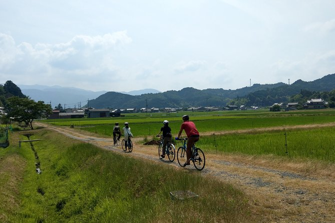 We cycle around Japanese countryside area and visit local attractions including studios related to Japanese culture (pottery, silk fabric, dyeing paper, wood processing and so on). The town is very flat and easy to cycle through. Experienced guide will show you the attraction of the neighborhood! Feel real Kyoto.