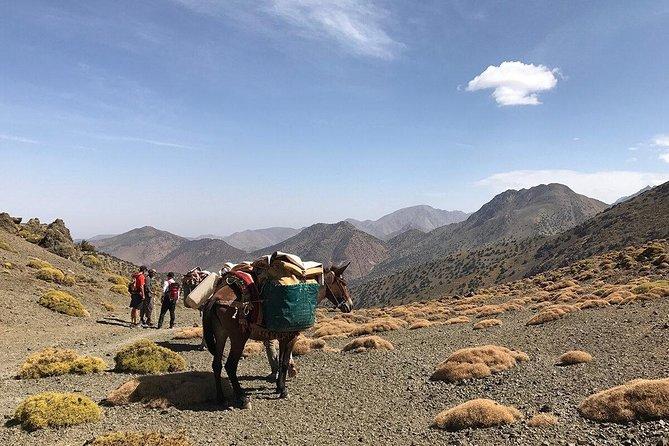Caminata privada de 2 días en el monte Toubkal desde Marrakech, Marrakech, Ciudad de Marruecos, MARRUECOS