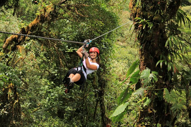 Experience an extreme adventure with a combination of a canopy tour and the hanging bridges walk on this 6.5-hour guided adventure. Also included in the package is a visit to one of the biggest butterfly gardens in Costa Rica and enjoy the view of hummingbirds fluttering around you. If you are looking for extreme adventures and amazing rides, Selvatura Park's canopy and hanging bridges tour is your best choice.