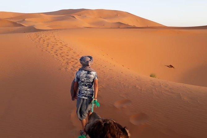MÁS FOTOS, Viaje de 2 días desde Fez hacia el desierto, icluyendo una noche en la Jaima
