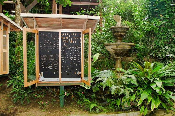 Excursión combinada a Selvatura Park desde Monteverde, Monteverde, COSTA RICA