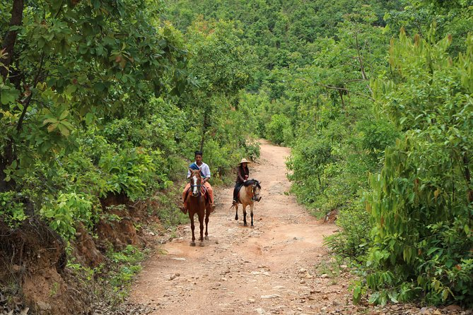 Combine Horse Back Riding & Culture<br><br>Sustainable activity likes growing the plants<br><br>Help to develop the education system of the local people<br><br>Exciting and refreshing<br><br>The taste of Natural etc....