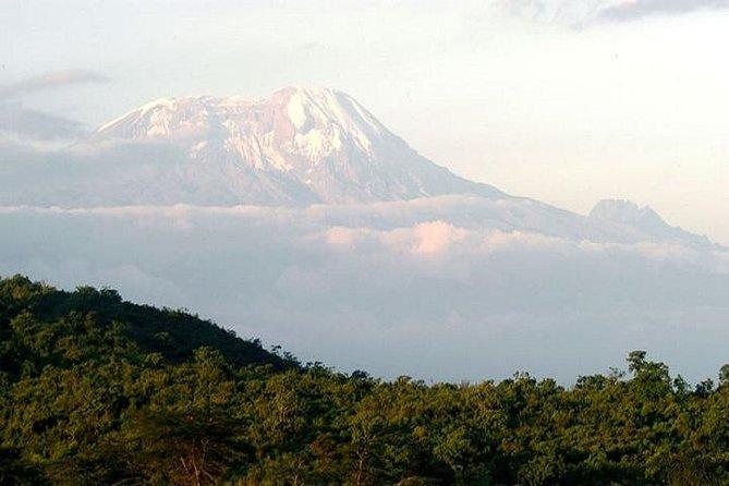 6 Days Kilimanjaro Trekking via Marangu Route, Moshi, Tanzânia
