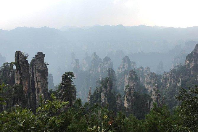 MÁS FOTOS, Private Day Trip to Avatar Mountain and Glass Bridge of Zhangjiajie