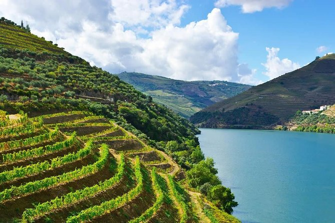Our tour starts in Oporto direction the Douro Valley, a wonder of nature with unique landscapes, classified as a World Heritage by UNESCO since 2001. You will visit 1 famous wine-producing properties where you will appreciate 5 different wines. Relax absolutely on the famous Pinhão panoramic cruise. Visit two of the most beautiful viewpoints in the world, indulge in the local<br>gastronomy, savoring typical lunch specialties in a renowned regional restaurant, with olive oil and wine tasting, located in one of the most beautiful viewpoints in the WORLD;