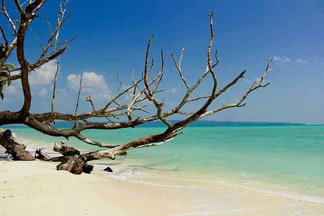 Havelock Island (Swaraj Dweep) is a picturesque natural paradise with beautiful white sandy beaches, rich coral reefs and lush green forest. It is one of the populated islands in the Andaman group with an area of 113 sq. km. and is located 39 km of north-east of Port Blair.