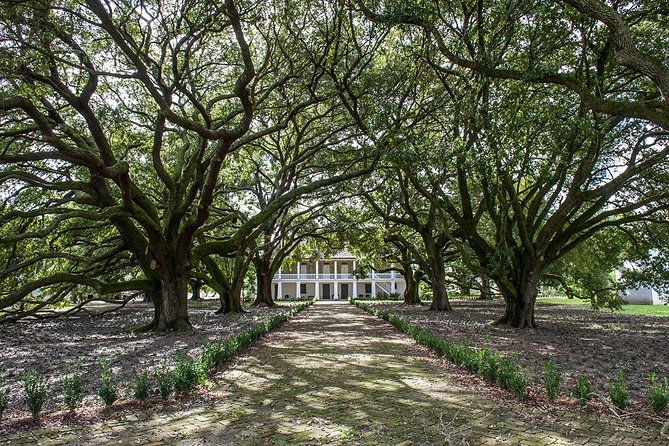Visit the Whitney Plantation of New Orleans and step back in time as you explore the 18th-century plantation museum, the only one of its kind in Louisiana. On this 5-hour tour (including travel time from New Orleans,) you'll see museum exhibits, memorial artwork, and restored buildings. Learn about an important part of American history as recorded from first-person slave narratives.