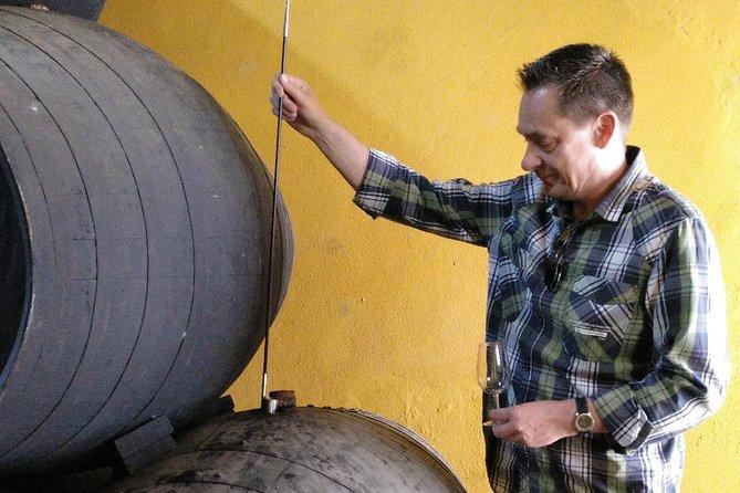 Discover Sherry in Jerez, Cadiz, ESPAÑA