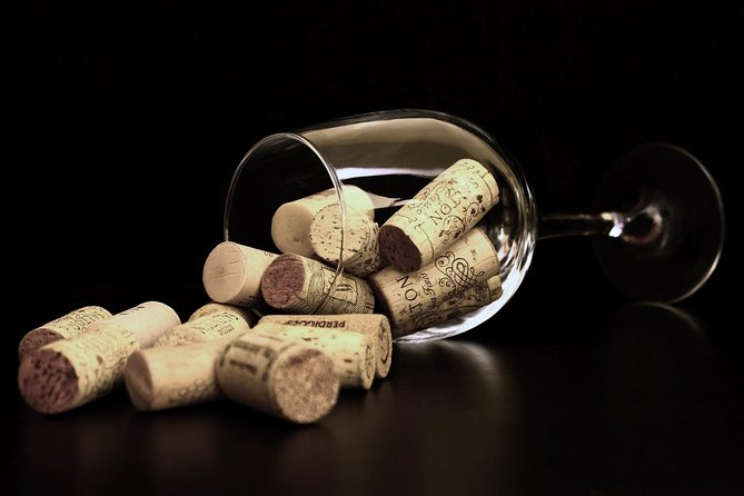 Amidst the Vineyards: Wineries & Lunch!, Tarragona, Spain