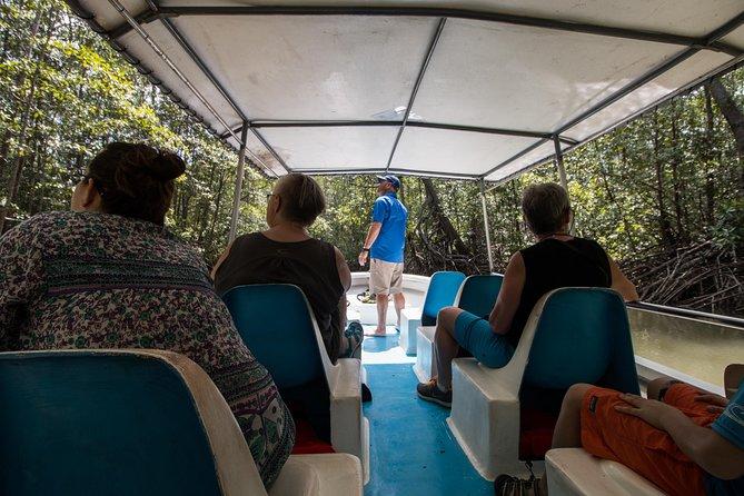 Recorrido en barco por el manglar de Damas desde Manuel Antonio, Quepos, COSTA RICA