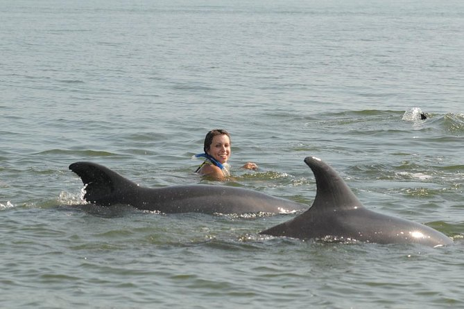 Wildlife Connection offers you the opportunity to visit these fabulous animals in their natural environment and to participate in a research project that helps us understand and protect our dolphins here in Puerto Vallarta. Come with us and interact with a Bottlenose pod. Our guides are professional biologists who will share with you their knowledge, making this excursion a once-in-a-lifetime experience! Remember that these dolphins are not confined and this is the NATURAL WAY to observe and enjoy them.<br><br>Do not contribute to capturing more dolphins! Visit them in their own environment because FREE DOLPHINS ARE HAPPY DOLPHINS!!!.<br>