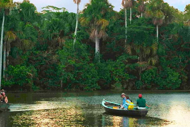 Tambopata Jungle Adventure Tour 4 Days, Puerto Maldonado, PERU