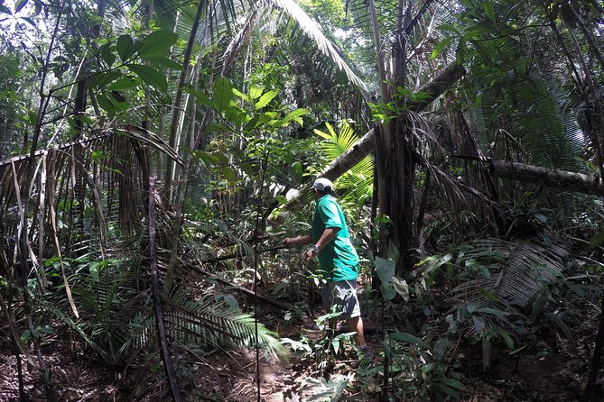 Amazon Explore 4D/3N-At Juma Floating Lodge, Manaus, BRASIL