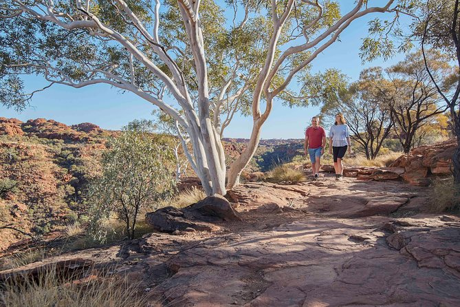 3-Day Tour from Uluru (Ayers Rock) to Alice Springs via Kings Canyon, Ayers Rock, AUSTRALIA