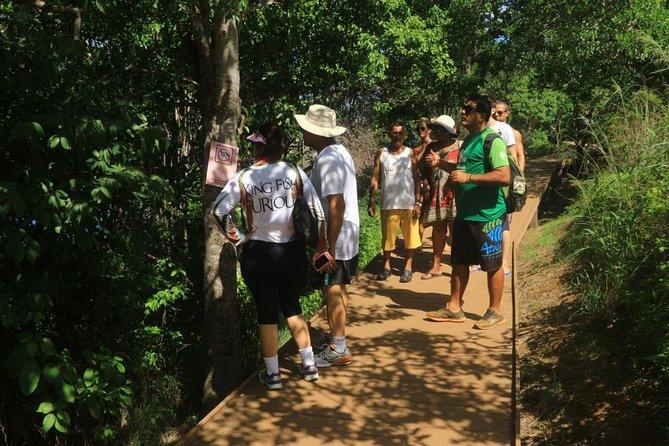 Full day tour en todo terreno 4x4, para descubrir un grupo de islas, Fernando de Noronha, BRASIL