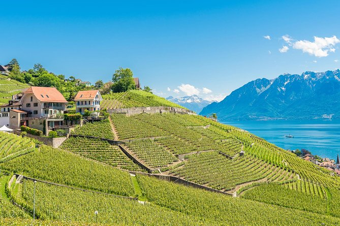 Lavaux Panoramic Tour from Lausanne, Lausana, Switzerland