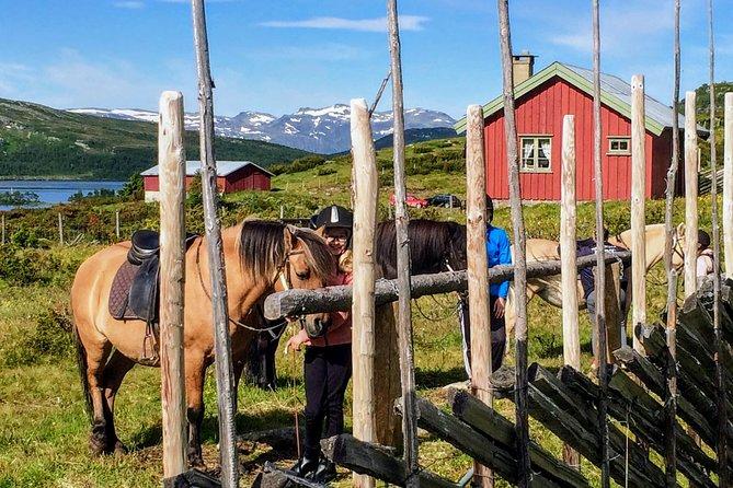 Mountains Adventure: Horse Trekking (2 days), Oslo, NORUEGA